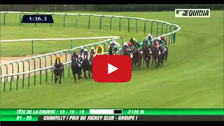 Intello - Prix du Jockey Club 2013